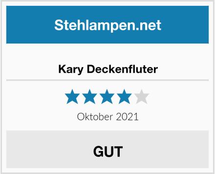 Kary Deckenfluter Test